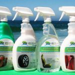 Giveaway – Ecolo Green Car Wash Kit – 3 Winners – Ends 2/4/10