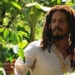 Giveaway – Marley Coffee Jamaica Blue Mountain Coffee – 5 Winners – Ends 6/10/11