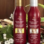 Giveaway – Surya Brasil Shampoo and Conditioner – Ends 10/20/11