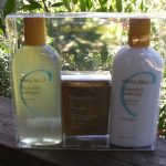 Review – Malibu Blondes Hair Care Products