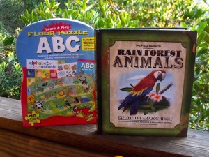 Giveaway – Silver Dolphin Summer Activity Book – Ends 6/16/12