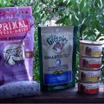 Giveaway – Pawalla Gift Box for Your Dog Or Cat – 2 Winners – Ends 1/13/13