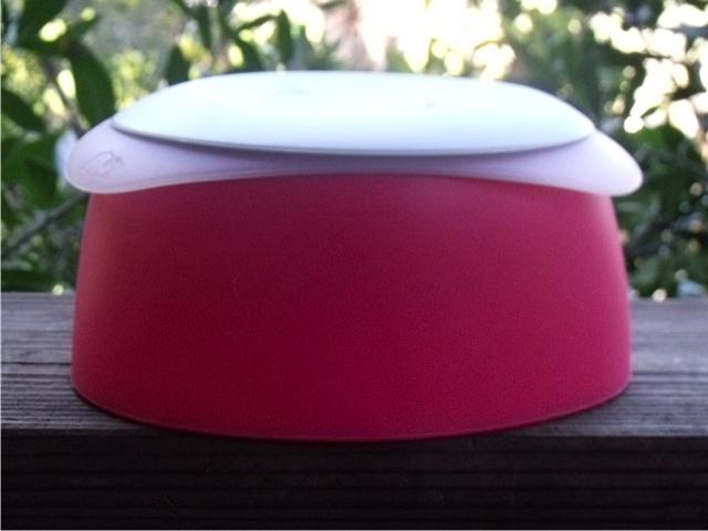 Very Berry Travel Bowl