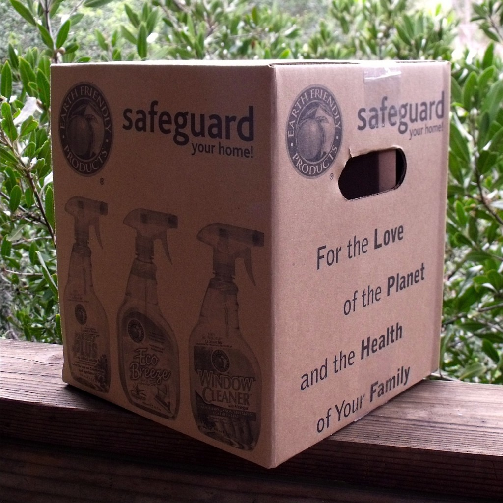 safeguard the home kit