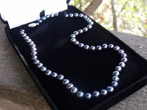Black Pearls from Pearl Paradise
