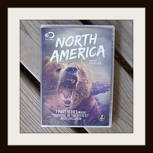 Discovery Channel North America DVD