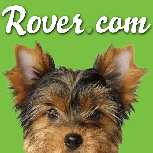 Reviews For Rover Dog Sitting