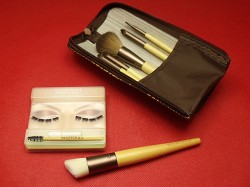 EcoTools Cosmetic Brushes and Lash System