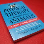 Physical Therapy and Rehabilitation for Animals