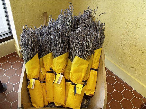 Lavender at L'Occitane FIGat7th DTLA