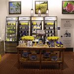 L'Occitane is Now Open in Downtown Los Angeles