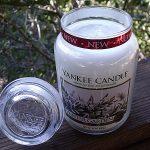 Yankee Candle Winter Garden Jar Candle