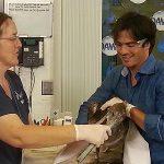 International Bird Rescue with Ian Somerhalder