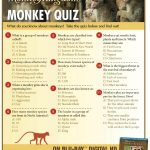 Disneynature Monkey Kingdom Trivia Quiz