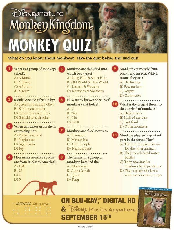 Disneynature Monkey Kingdom Trivia Quiz