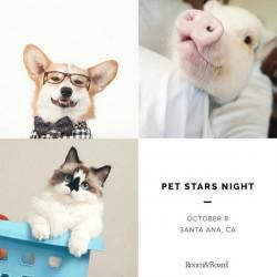 Pet Stars Night OC