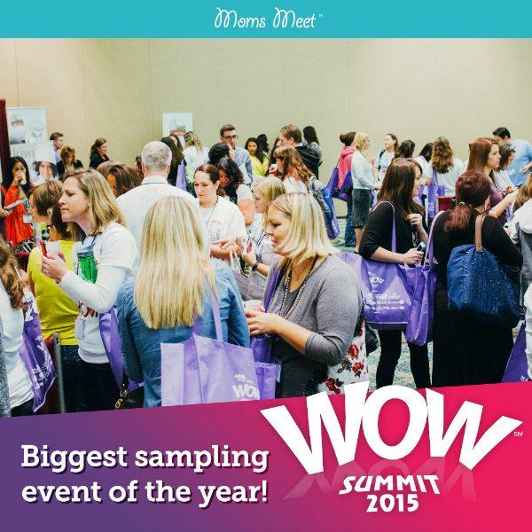 Moms Meet WOW Summit