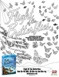 Flight of The Butterflies Coloring Page