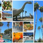 Where to Sleep, Eat and Play in Palm Springs