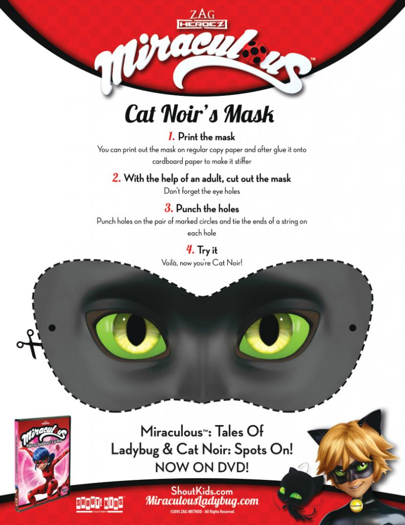 Miraculous Cat Noir Mask Craft