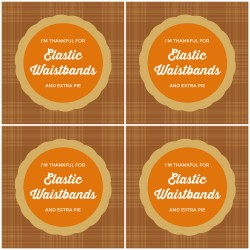 Free Printable Funny Thanksgiving Coasters Craft