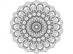 Free Printable Lacy Flower Coloring Page for adults or kids