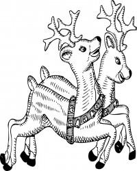 Santa's Reindeer Coloring Page