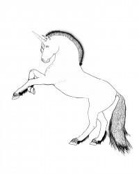 Free Printable Unicorn Coloring Page