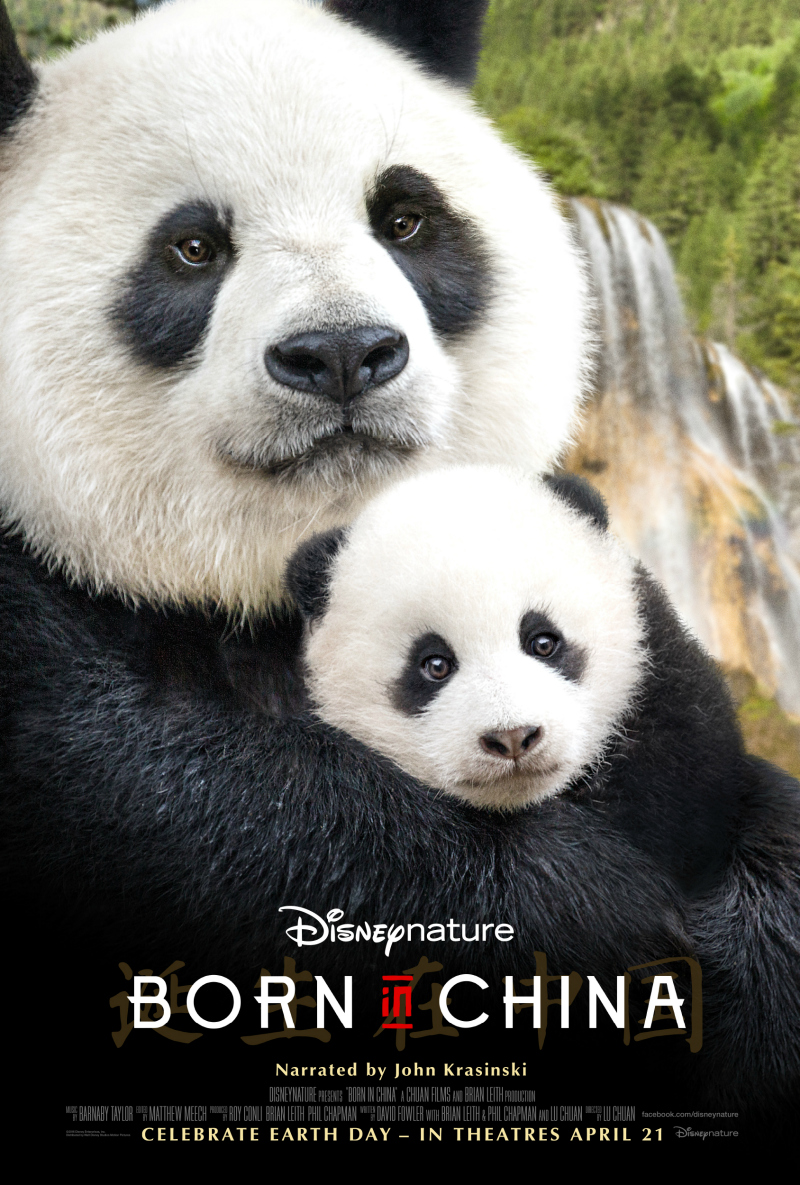 Disneynature Born in China Movie about Pandas