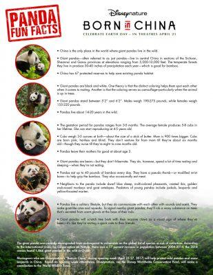 Free Panda Fun Facts Printable from Disney