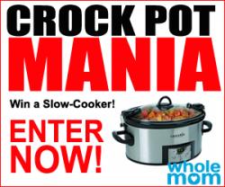 crock pot mania