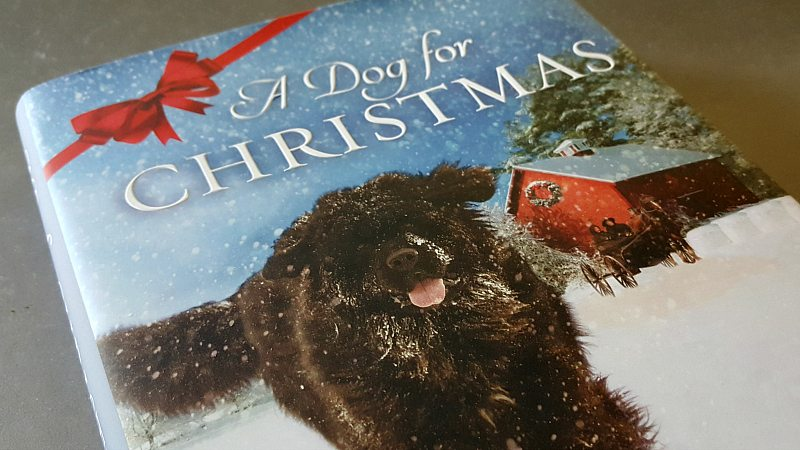Dog for Christmas Holiday Gift Guide