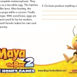 Bee Facts Worksheet – Free Printable
