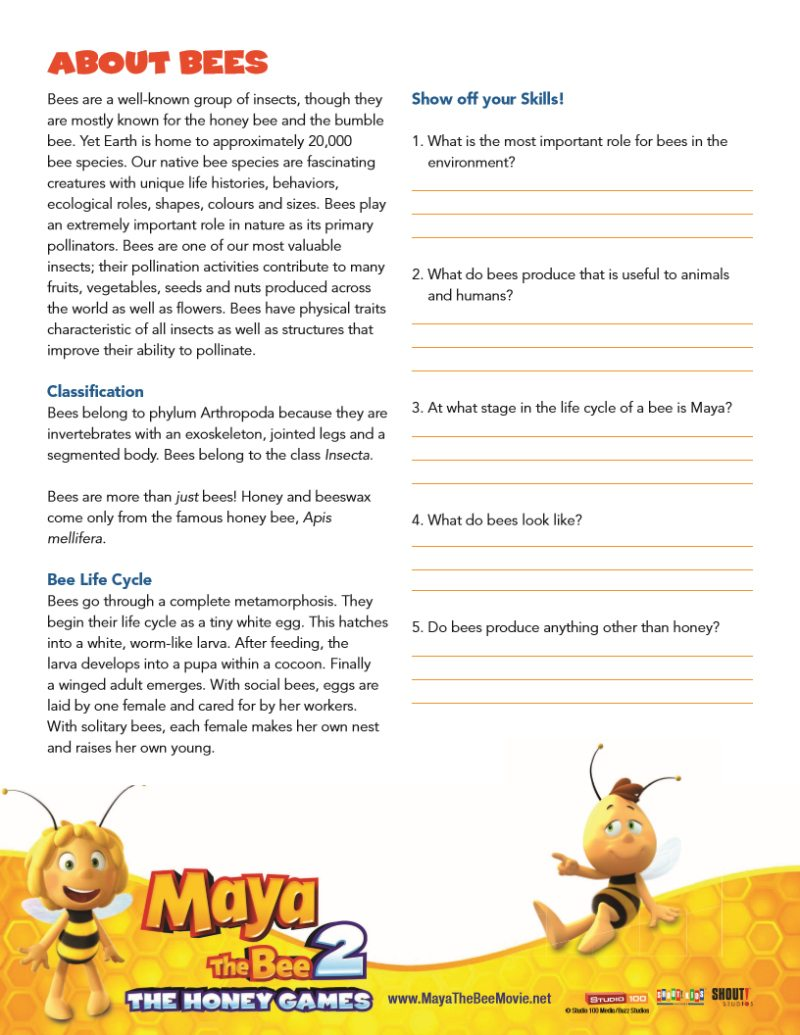 picture regarding Invertebrates Worksheets Free Printable named Bee Details Worksheet - Free of charge printable down load versus Maya The Bee