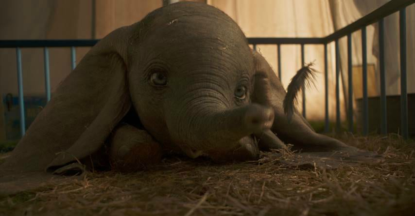 feature dumbo live action trailer
