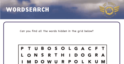 feature sgt stubby word search