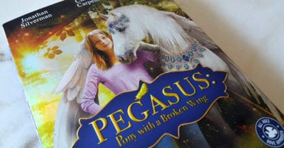 feature pegasus pony
