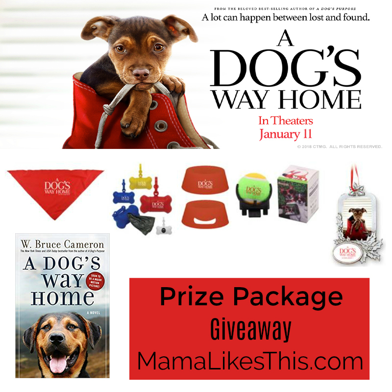 dogs way home giveaway