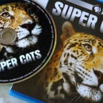PBS Super Cats Blu-ray Giveaway – Ends 1/24/19