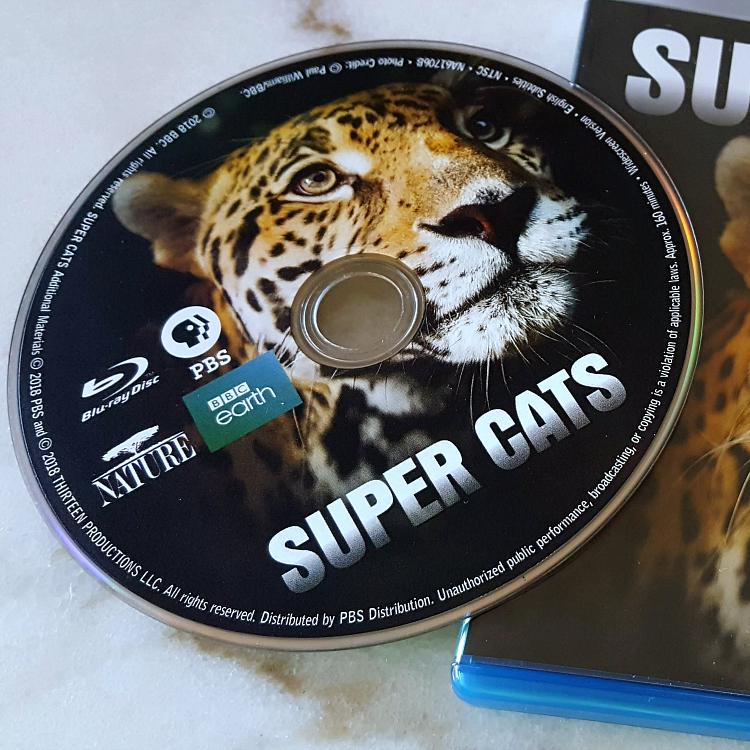 square super cats bluray