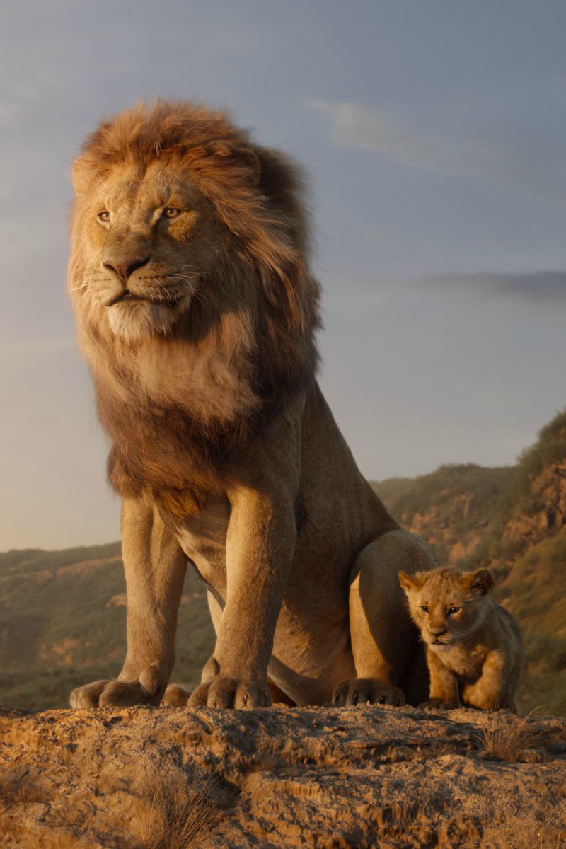 Disney Live Action Lion King Trailer Featuring Simba
