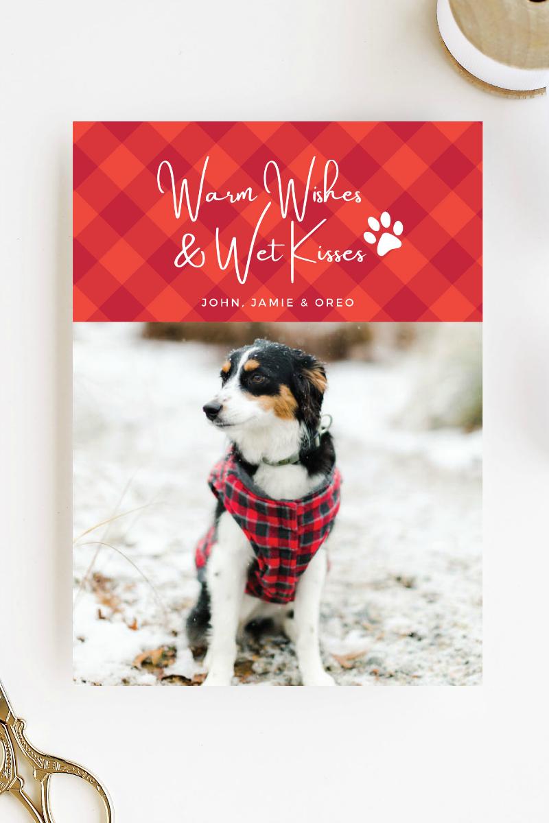 dog holiday card