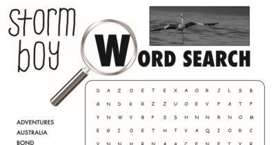 feature storm boy word search