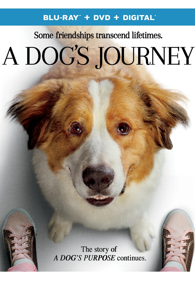 A Dog's Journey Blu-ray DVD - follow up movie to A Dog's Purpose