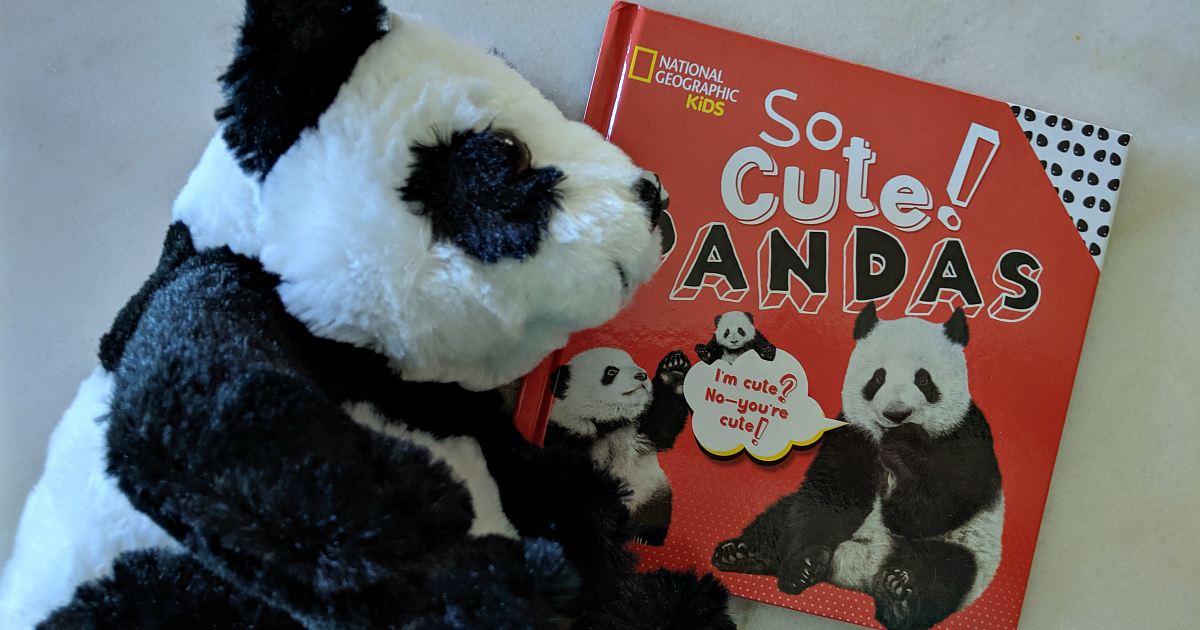nat geo so cute pandas