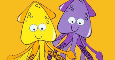 feature squid craft