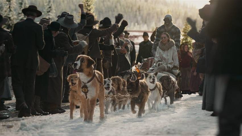 dog sled from call of the wild