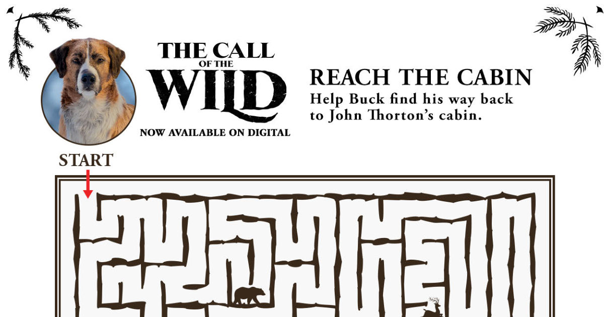 feature call of the wild maze