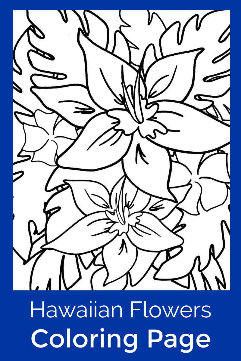 Free Printable Hawaiian Tropical Flowers Coloring Page #FreePrintable #Flowers #ColoringPage #HawaiianFlowers #HawaiianColoringPage #TropicalColoringPage