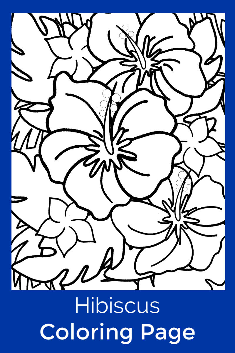 pin printable hibiscus coloring page